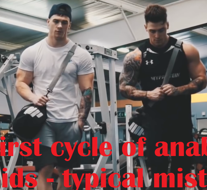 beginner steroid cycle